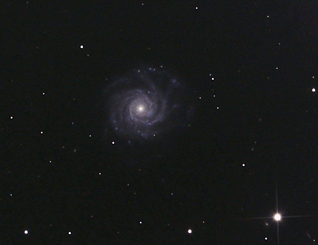 NGC2938